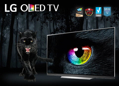 LG OLED Mobile