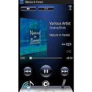Onkyo TX-8020 Phone Music Control