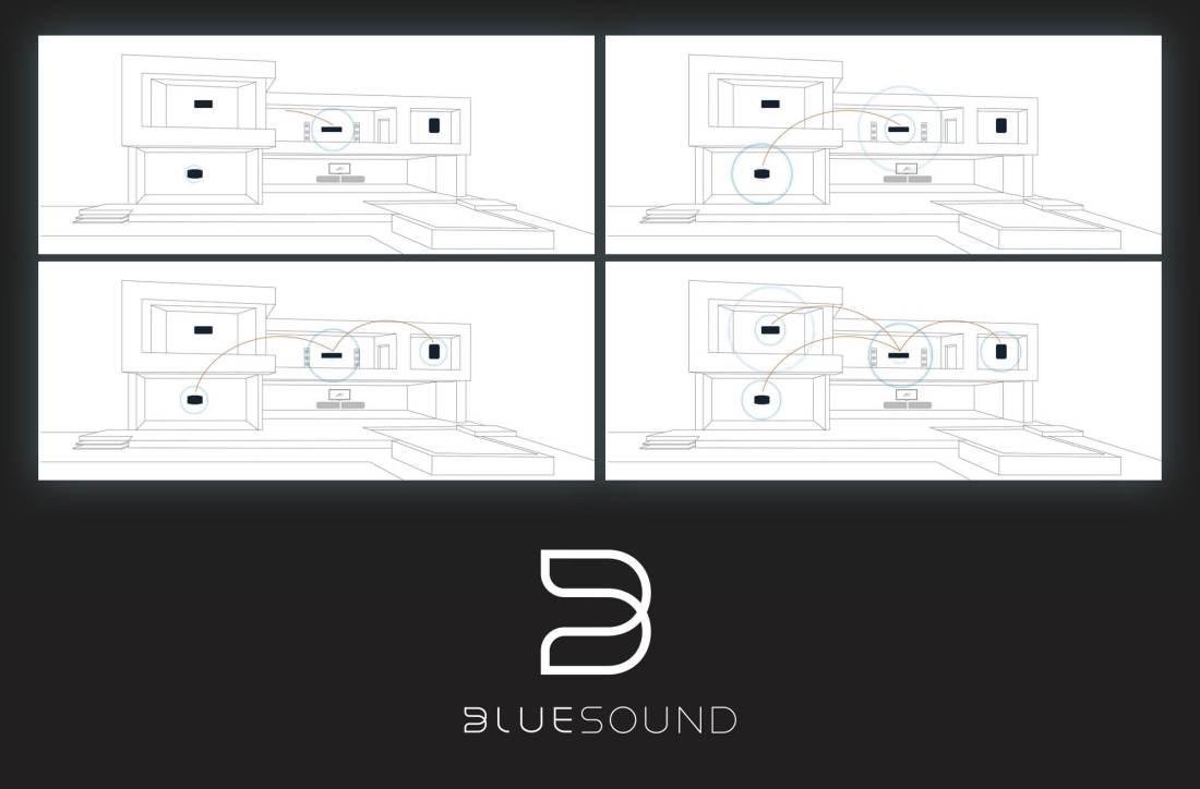Bluesound powernode 2i Gibbys