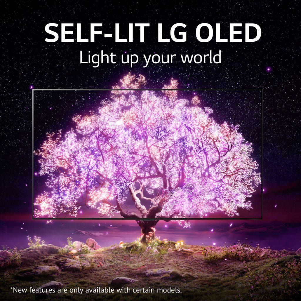 15_Self it OLED